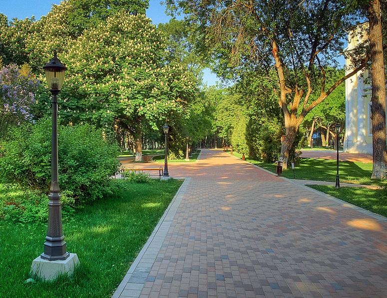 В новом парке посадили первые деревья
