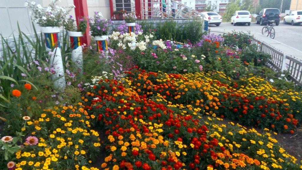 В ИКЦ пройдет городской фестиваль «Калуга в цвету»