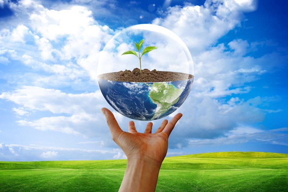 В регионе стартовал экологический конкурс