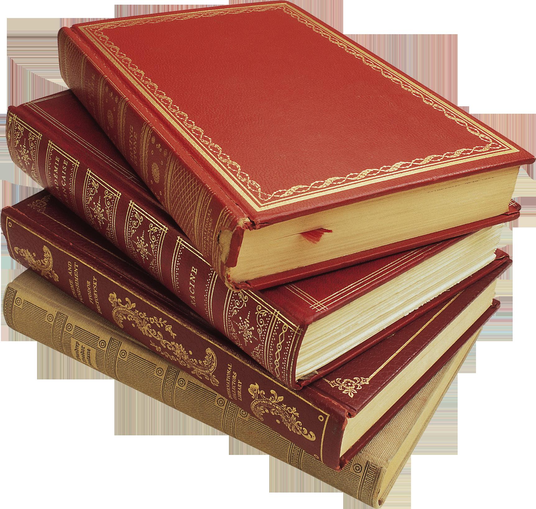 В библиотеке Белинского открылась выставка книг