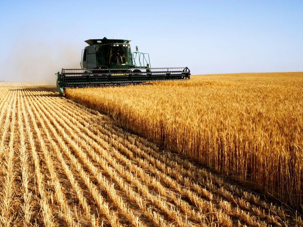 В Калуге наградили аграрные производства