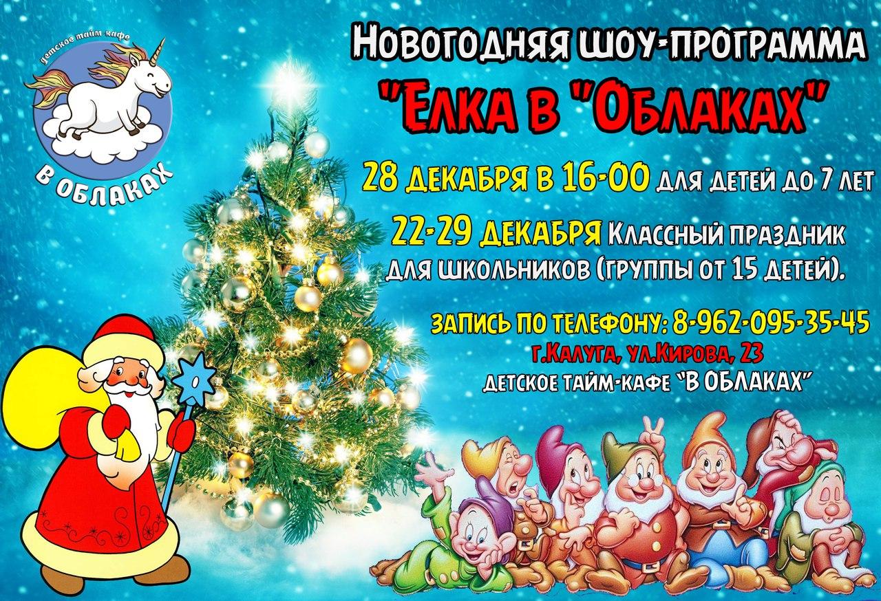 Новогодняя шоу-программа «ЁЛКА В ОБЛАКАХ»