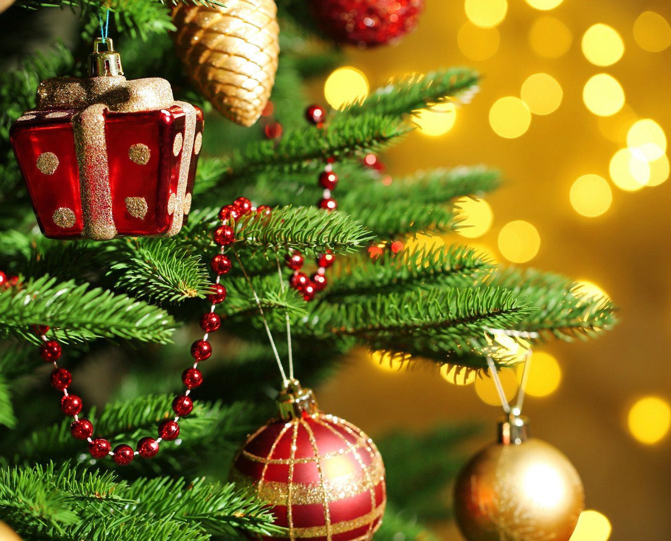 В Калуге прошла Новогодняя губернаторская елка для молодежи