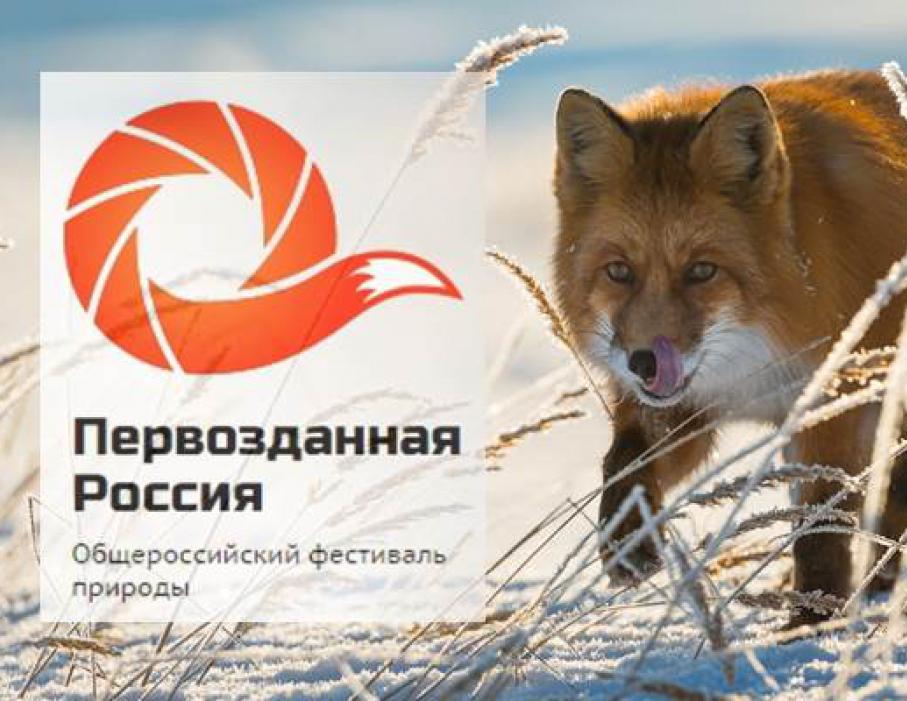 В Калужской областной филармонии откроется выставка-фестиваль «Первозданная Россия»