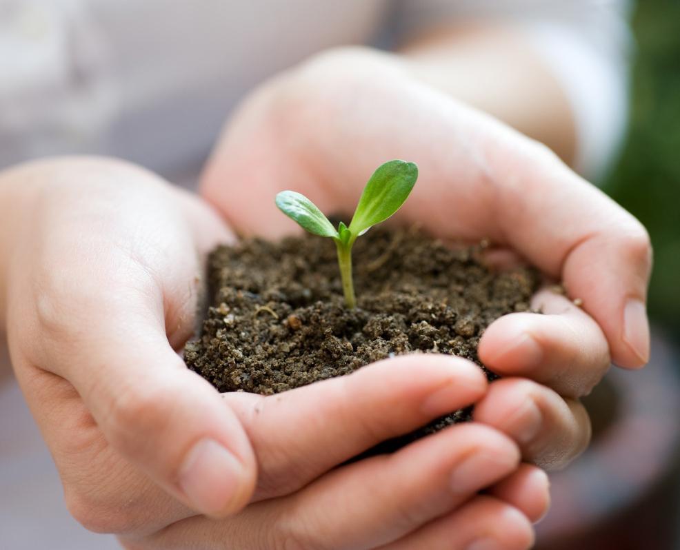В Калуге прошел семинар для садоводов