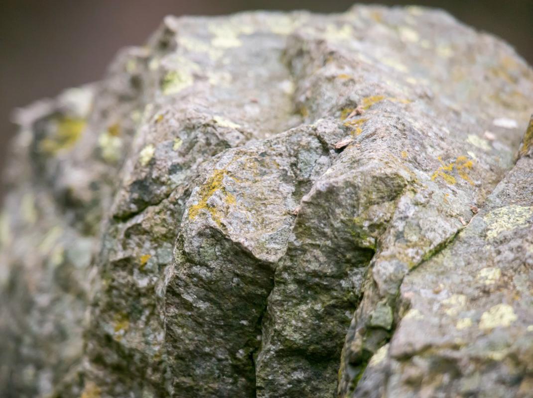 День геолога отметили в Калуге
