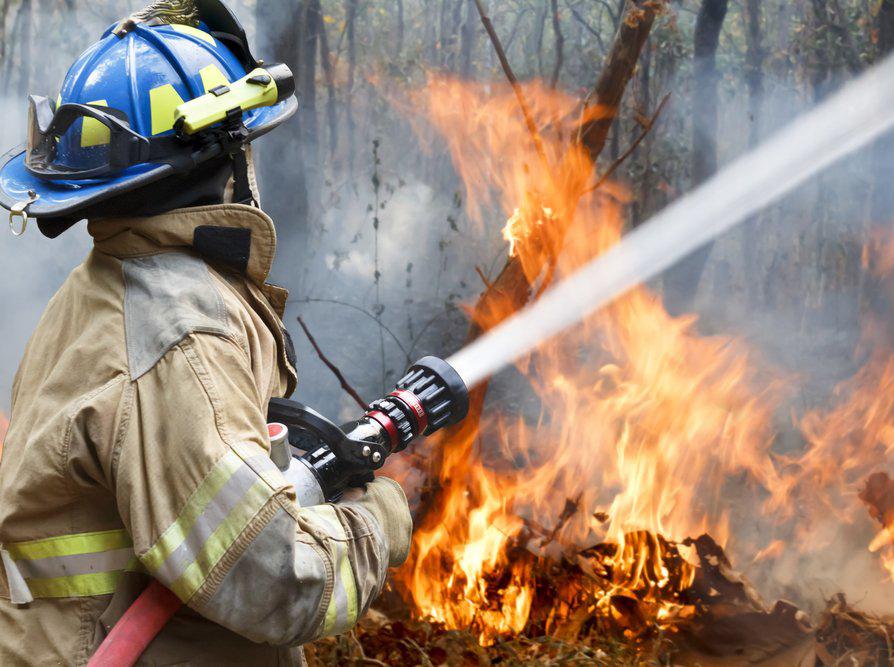Конкурс на лучшего лесного пожарного пройдет в Калужской области