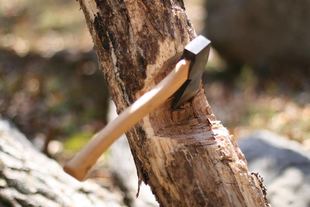 Калужские лесорубы показали свои умения