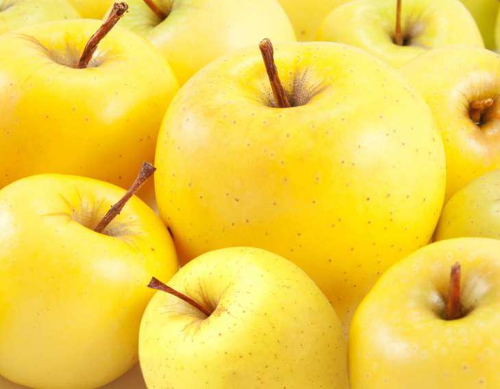 Открытие фестиваля «Калужское яблоко»