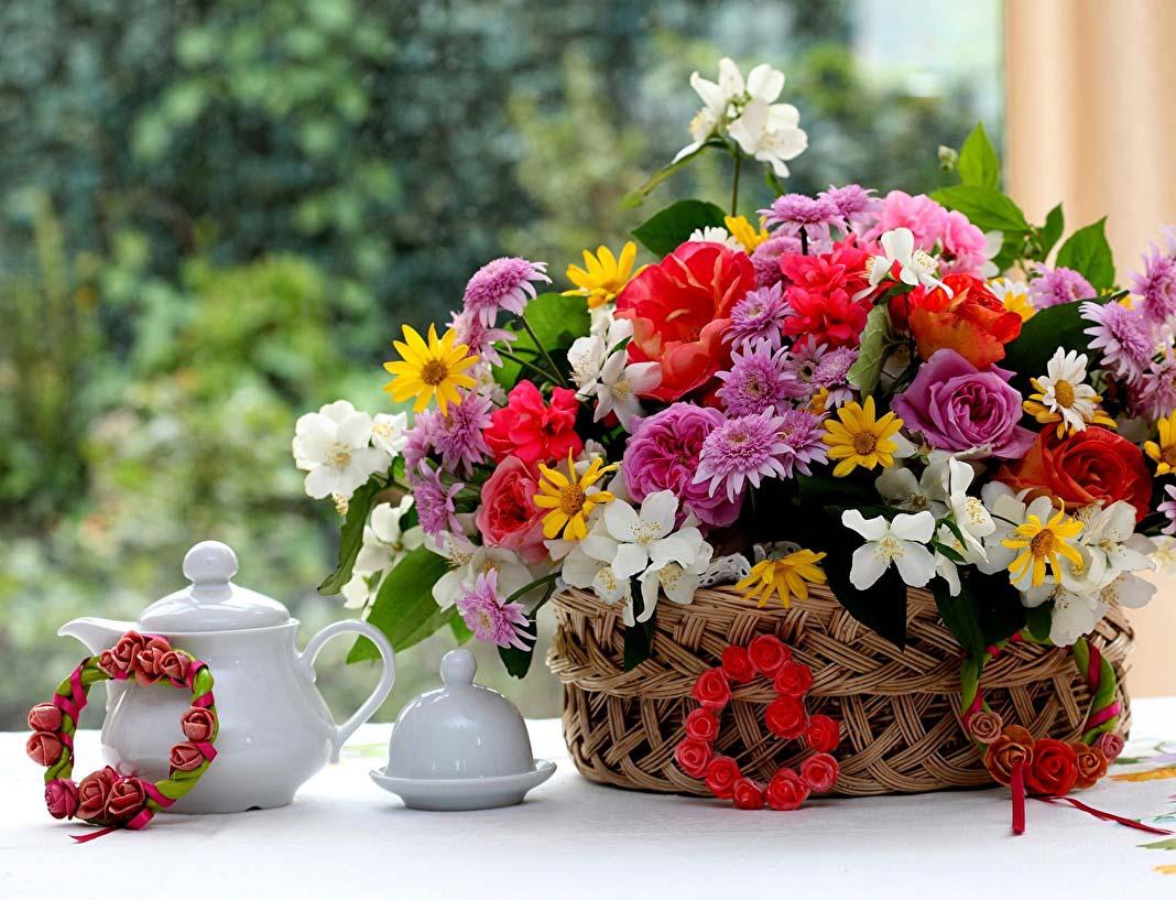 В новом городском парке пройдет фестиваль «Калуга в цвету»