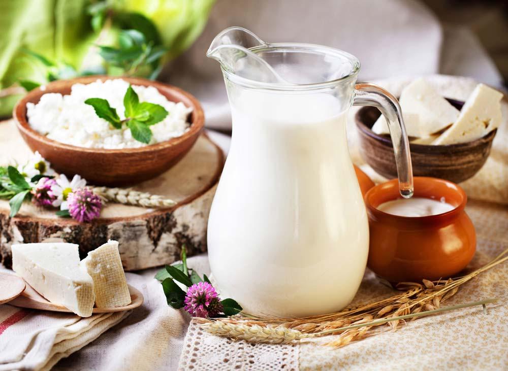 В Калужской области появится крупнейший в России молокозавод