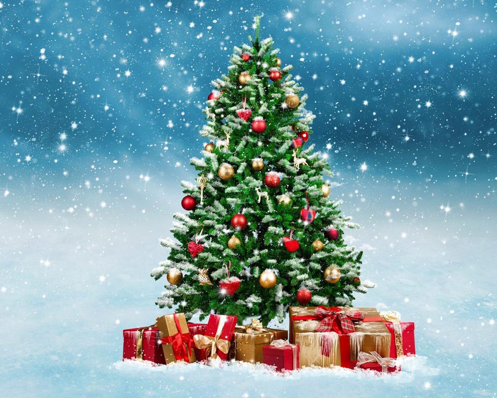 Главную новогоднюю елку Калуги установят 10 декабря