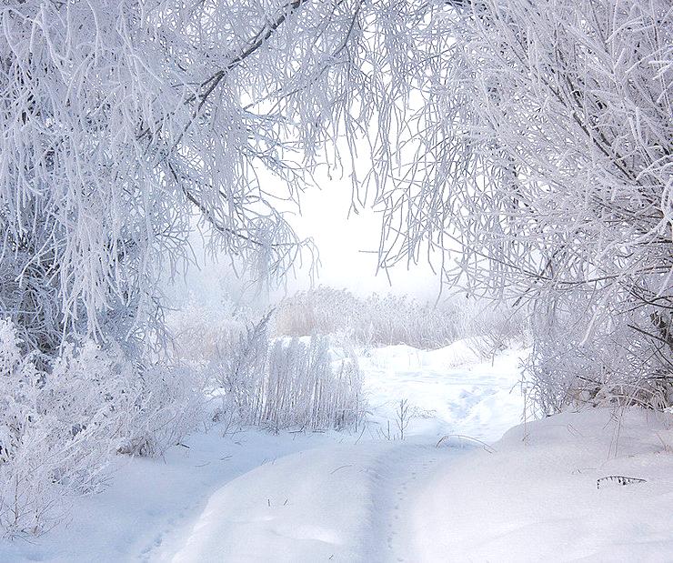 На Калугу обрушился сильный снегопад