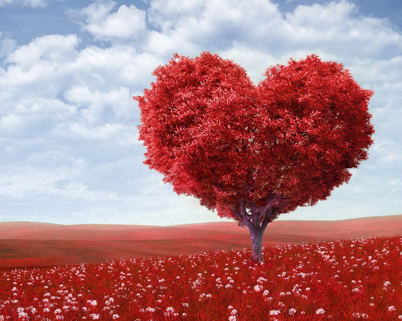 Сегодня отмечается День всех влюбленных