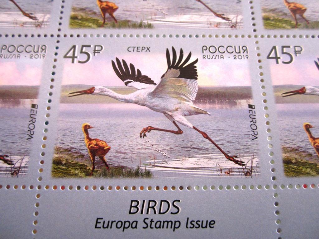 В Калуге можно приобрести необычные марки