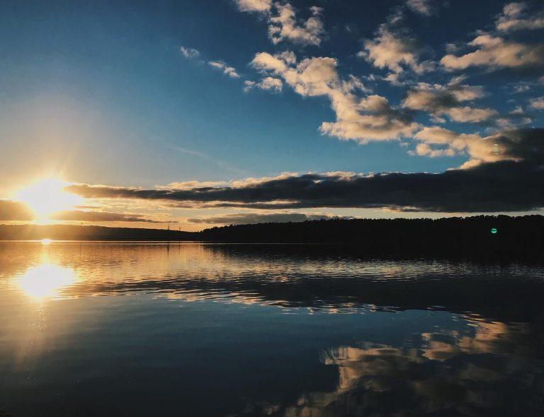 Яченское водохранилище почистят в 2020 году