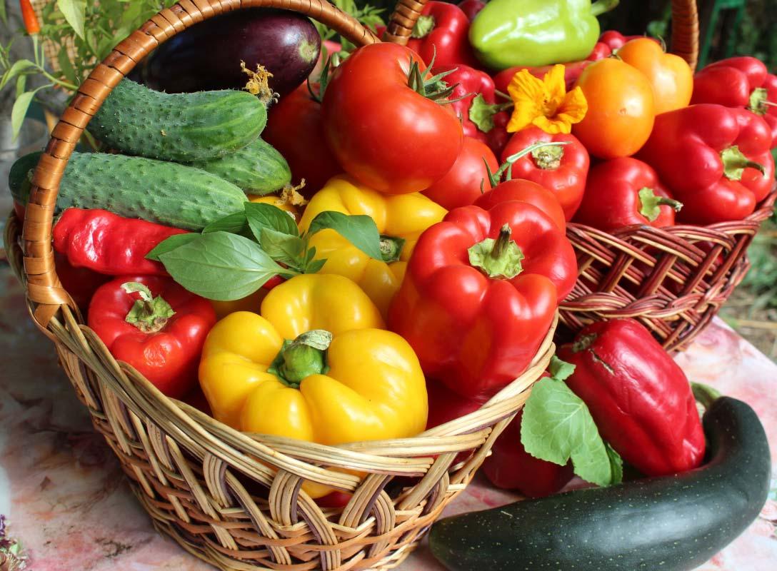 Проводится конкурс «Калуга урожайная»