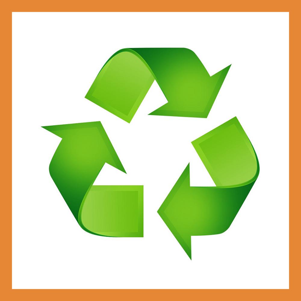 Подведены итоги раздельного сбора мусора