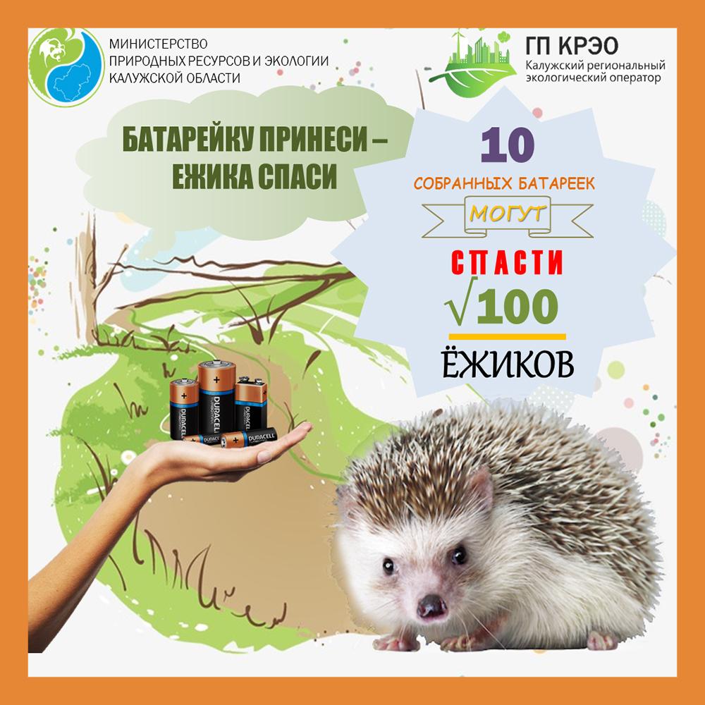 Калужан приглашают принять участие в экологической акции