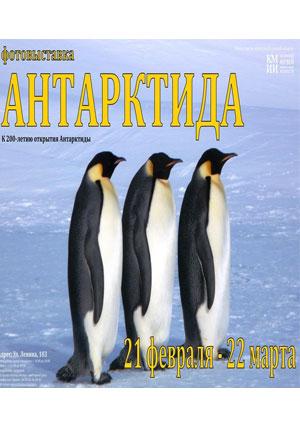 Фотовыставка «Антарктида». КМИИ