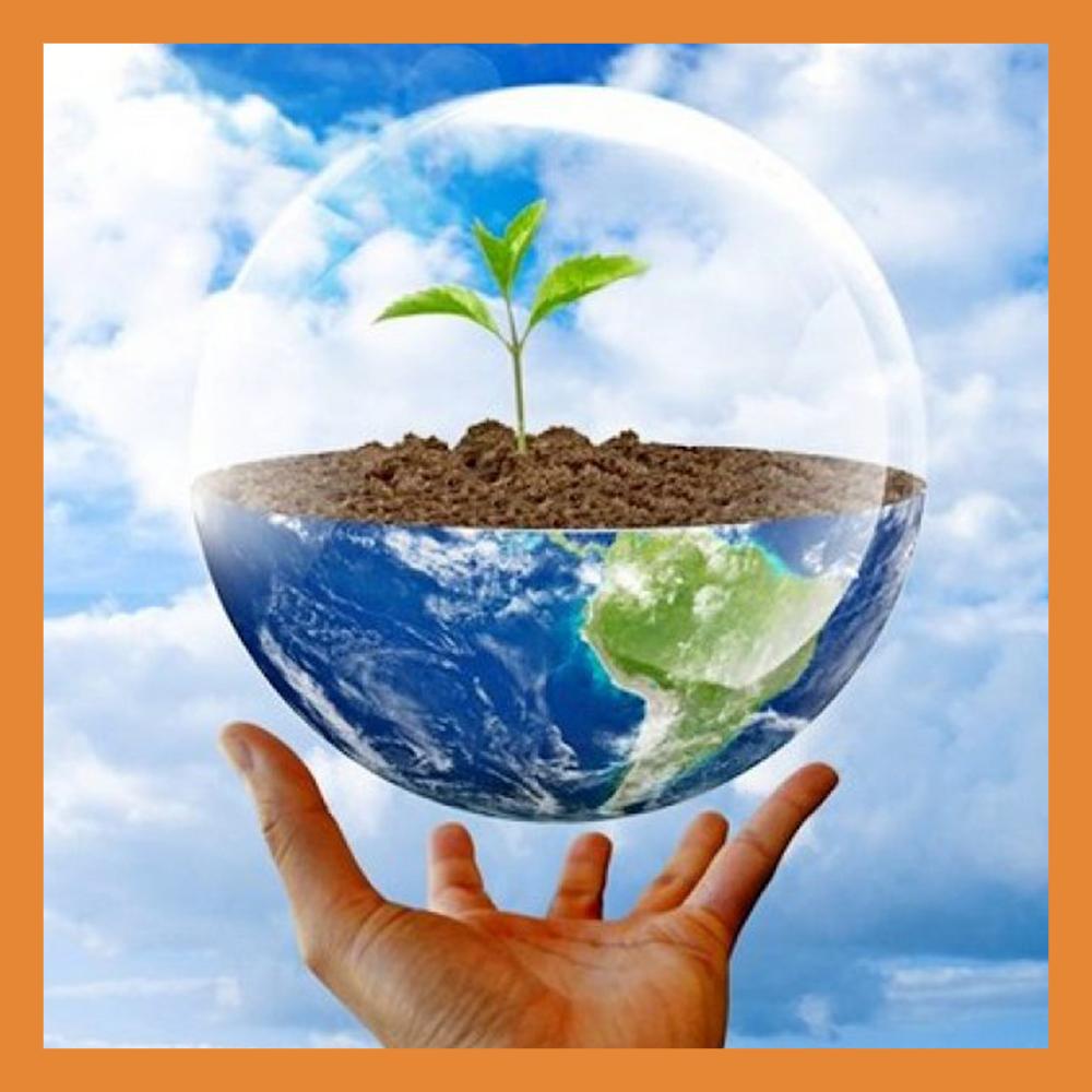 Калужанам предложили придумать экологический слоган