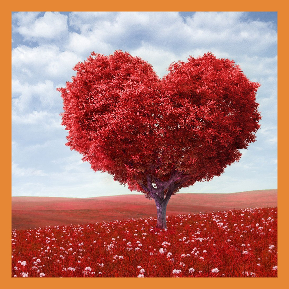 14 февраля отмечается День всех влюбленных