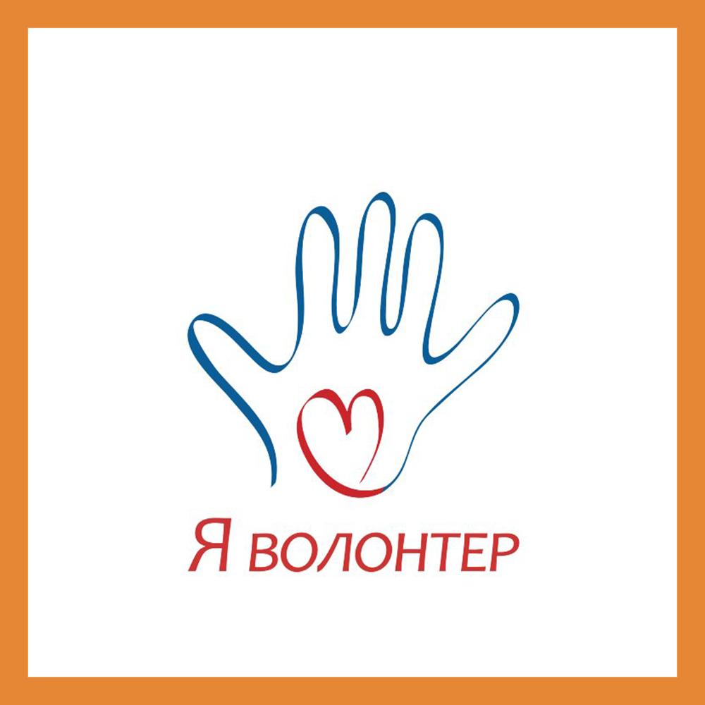 Как обратиться за помощью к волонтерам