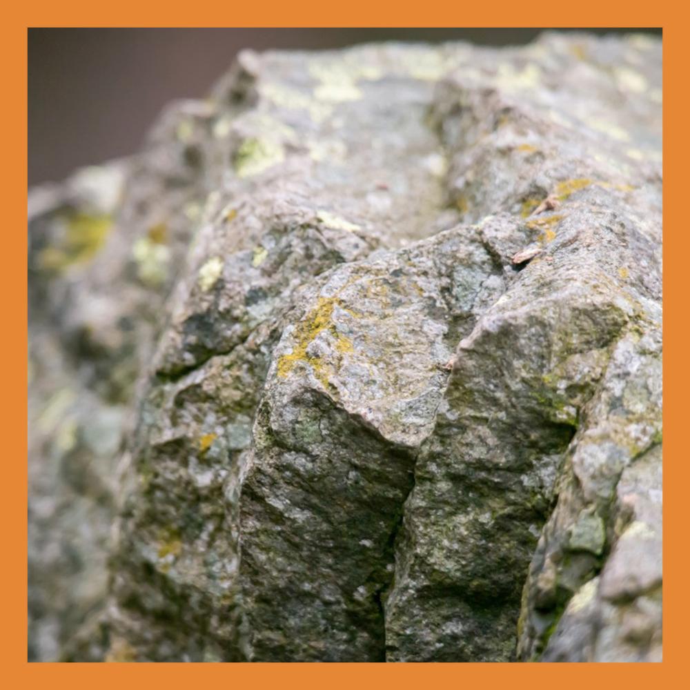 Калужских геологов поздравили с праздником