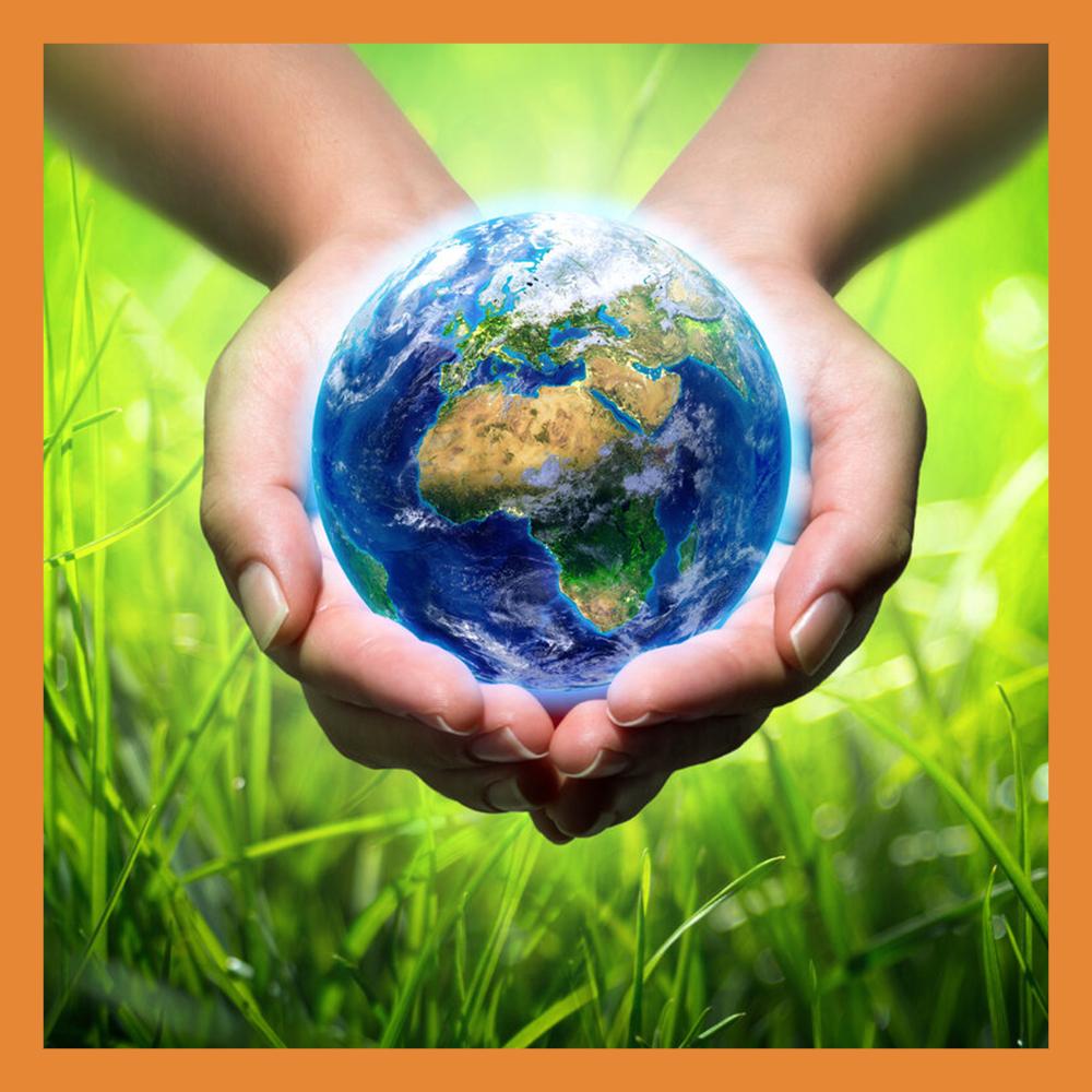 Экологов Калужской области поздравили с профессиональным праздником