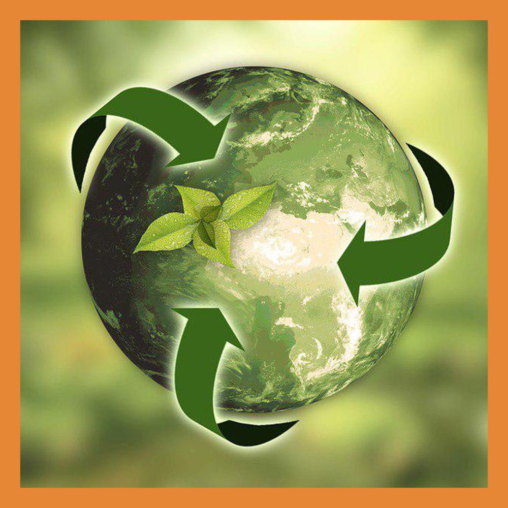 Калужская область улучшила свои позиции в «Национальном экологическом рейтинге»