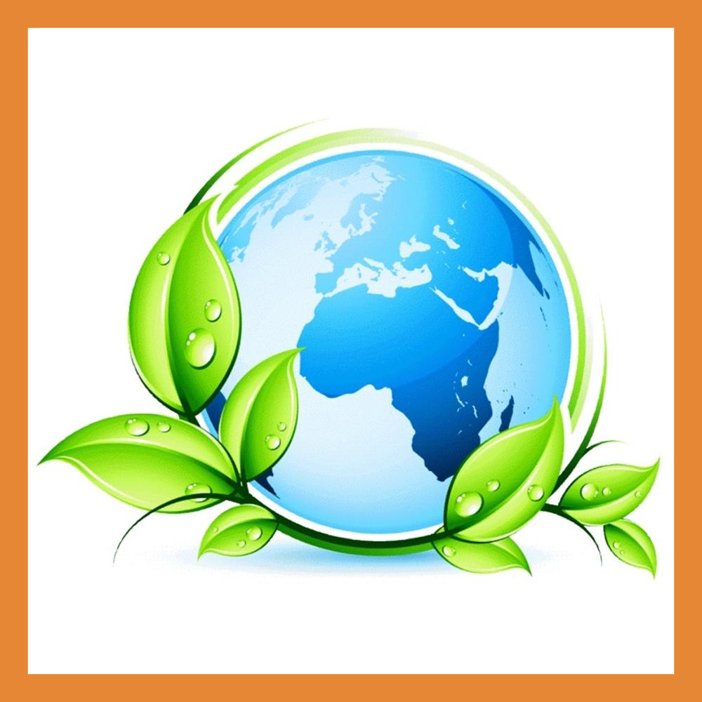 В Калуге назовут имя лучшего молодого эколога региона