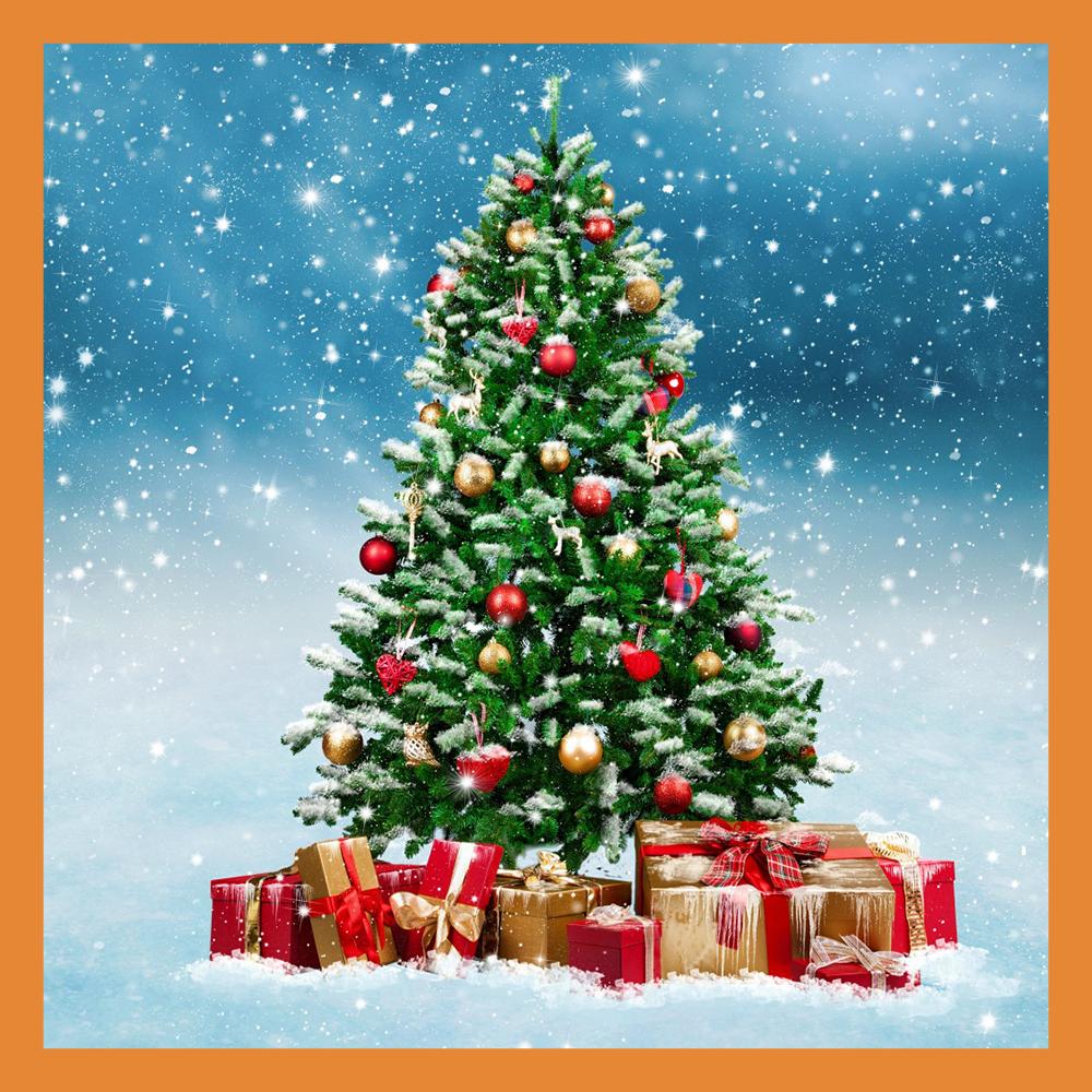 В Калуге заработал пункт сдачи новогодних елок