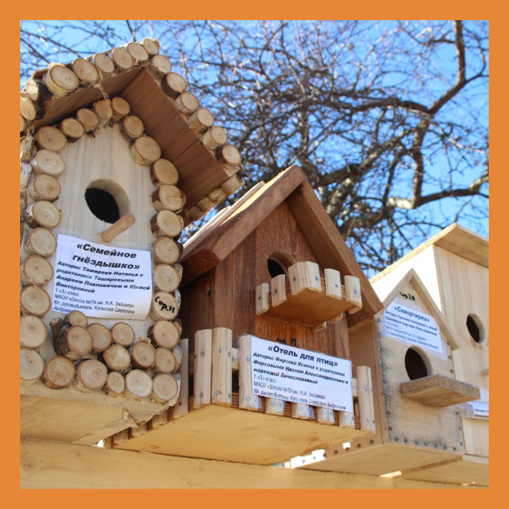 В Калужской области стартовал конкурс «Домик для птиц»