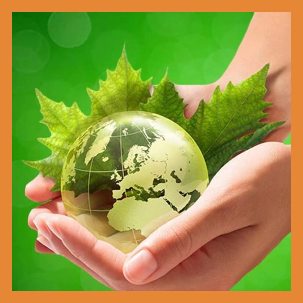 В Калуге отметили Всемирный день охраны окружающей среды и всероссийский День эколога