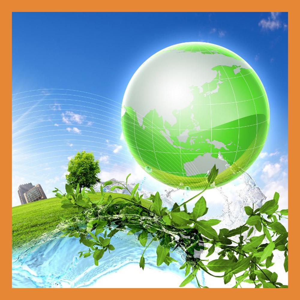 Калужская область попала в десятку экологичных регионов